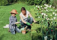 entretien jardin mars