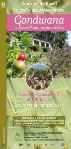 """""""Gondawana"""", la fête des plantes méditerranéennes du domaine du Rayol"""