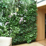 terrace plant wall