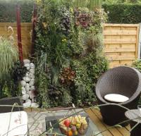 Cr er un mur v g tal jardiner malin jardinage et for Mur vegetal exterieur en kit