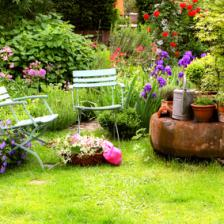 Mois par mois jardiner malin jardinage et recettes de for Au jardin conseil