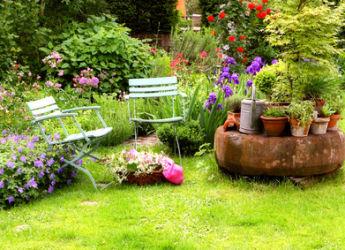 Juillet tous les travaux de jardinage for Www jardiner malin fr