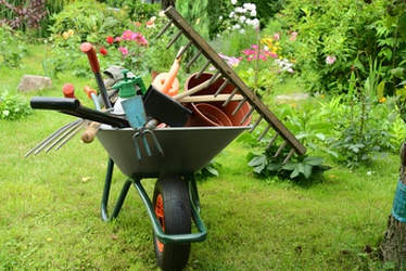 The gardening tools of the perfect gardener