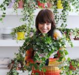 hiver plante verte