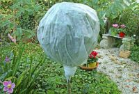 Jardinage for Protection hivernale plantes