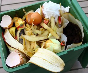Unavoidable compost!