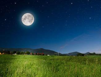 Jardiner avec la lune comment quand apprendre - Comment jardiner avec la lune ...
