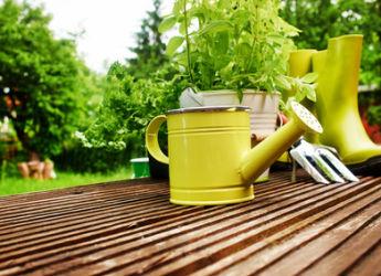 Conseils de jardinage en avril for Au jardin conseil