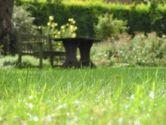 anti mousse pelouse comment la supprimer. Black Bedroom Furniture Sets. Home Design Ideas