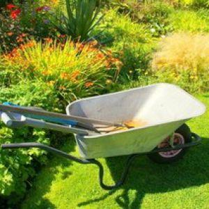 Septembre au jardin quels travaux de jardinage for Au jardin conseil