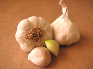 Garlic decoction, technique and timing