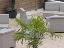 Resin garden furniture, a trendy option