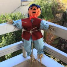 How to build your own scarecrow