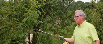 1363163593traitement-bio-arbres-fruitie