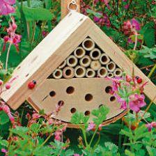 traitement maladies archives jardiner malin jardinage et recettes de saison. Black Bedroom Furniture Sets. Home Design Ideas