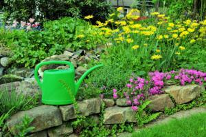 Jardinage en mai travaux et conseils for Conseil en jardinage