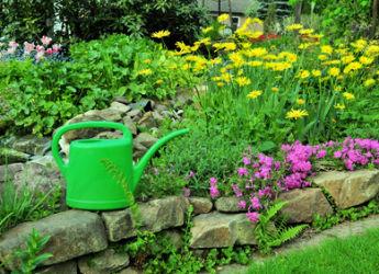 jardinage en mai travaux et conseils