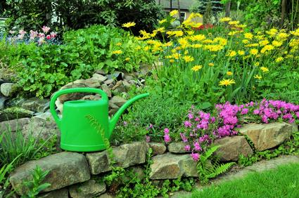 Jardinage en mai travaux et conseils Jardinage en janvier
