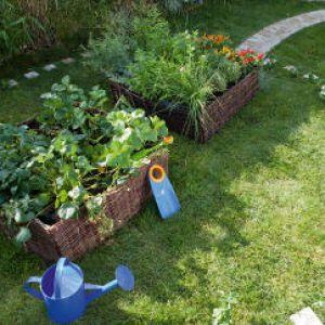 Jardin de curé : principe, fleurs et inspirations