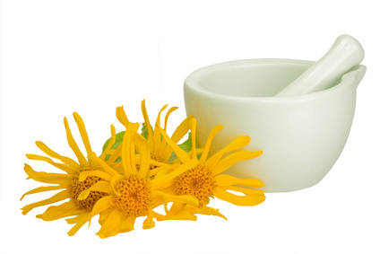 Arnica health benefits and therapeutic value