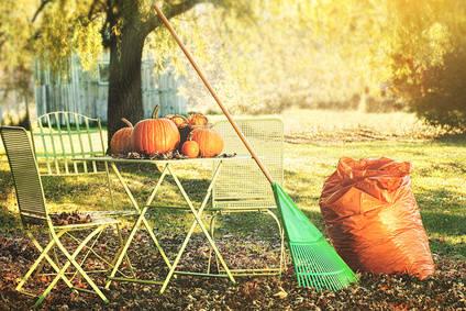 Jardinage en novembre travaux et conseils for Conseils en jardinage