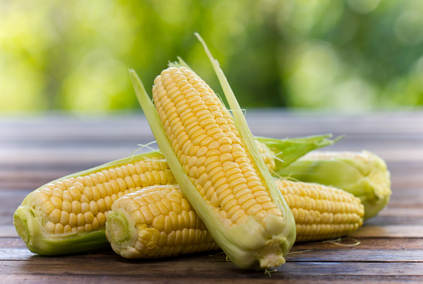 Corn health benefits and therapeutic value