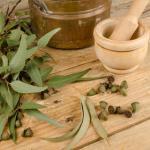 bienfaits et vertus pour la santé de l'eucalyptus