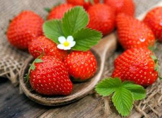 fraise bienfaits vertus