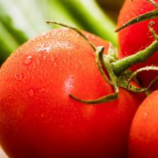 tomate santé bienfaits vertu