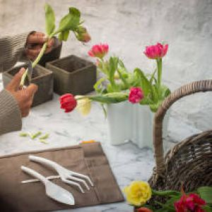 All important gardening tools and their definitions for Important gardening tools