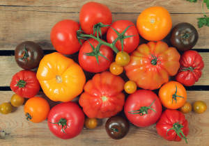 variete tomate facile