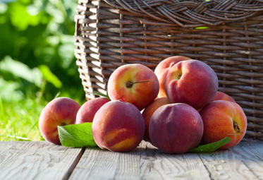Peach health benefits and therapeutic value