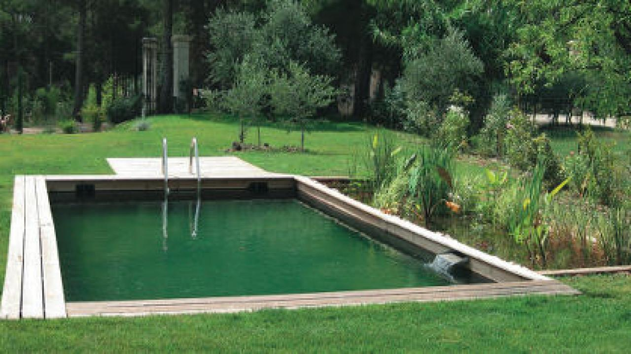 Transformer Son Bassin En Piscine piscine naturelle : fonctionnement et entretien