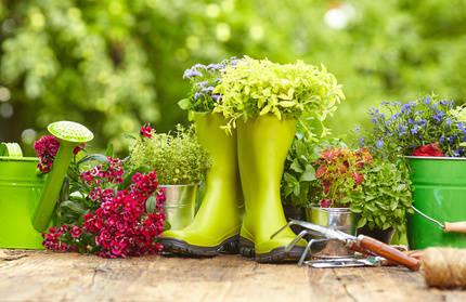 Calendrier du jardinier en septembre octobre novembre et for Calendrier du jardinier