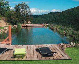 piscine naturelle plantes