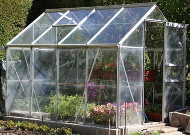 les plantes hiverner protection abri et solutions