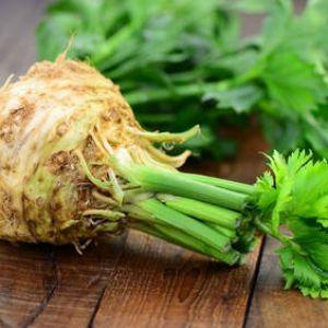 C leri semis culture et r colte rave et branche - Comment cuisiner le celeri en branche ...