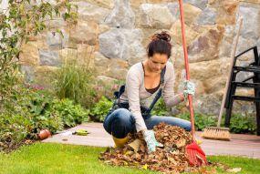 travaux automne jardin jardinage