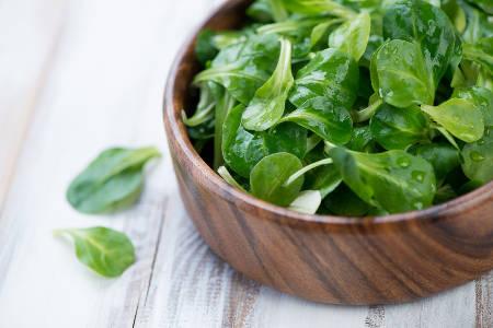 Culture en pots salade fraisier framboisier conseils for Entretien salade jardin