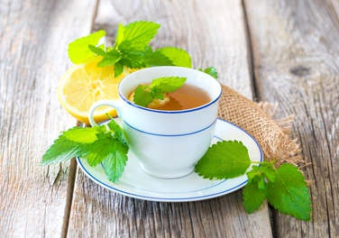 Lemon balm health benefits and therapeutic value