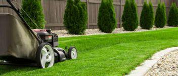 Jardinage for Entretien gazon printemps