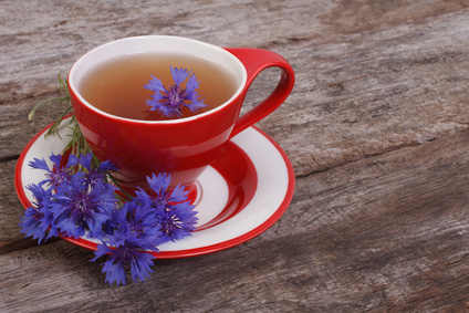 Cornflower health benefits and therapeutic value