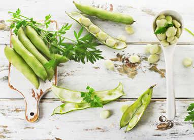 Jardiner malin jardinage et recettes de saison for Conseils en jardinage