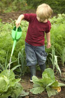 jardinage durable