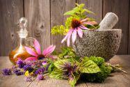 grippe plantes