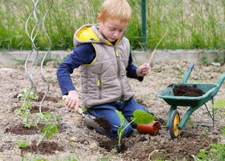 jardinage enfants conseil