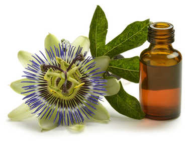 Passion flower health benefits and therapeutic value
