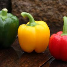 Bell pepper health benefits and therapeutic value
