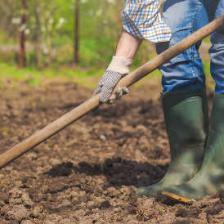 jardinage ecolo bio