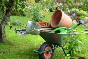 outils jardinage bio